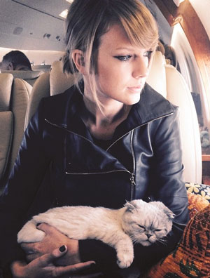 Taylor Swift Admits She's a Crazy Cat Lady